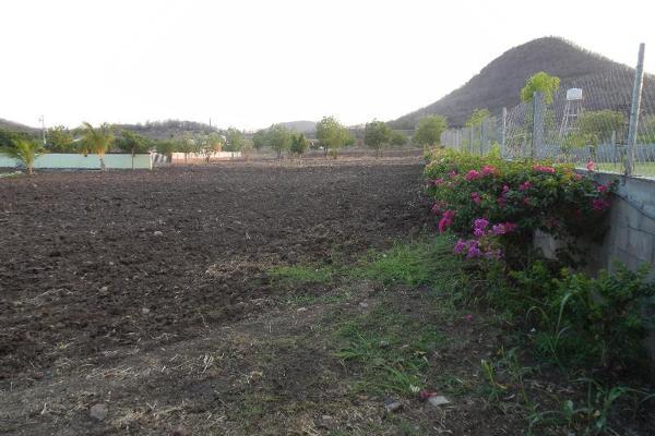 Foto de terreno comercial en venta en  , el limón de los ramos, culiacán, sinaloa, 7887216 No. 12