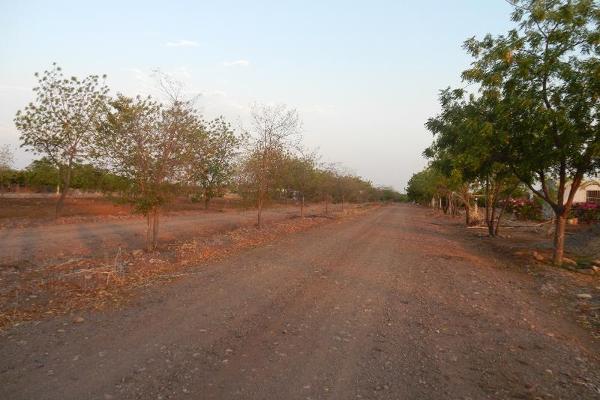 Foto de terreno comercial en venta en  , el limón de los ramos, culiacán, sinaloa, 7887216 No. 15