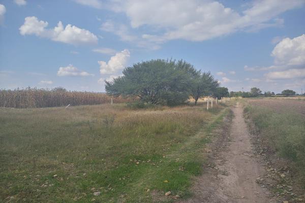 Foto de terreno industrial en venta en el llano , el llano, jesús maría, aguascalientes, 12275631 No. 02
