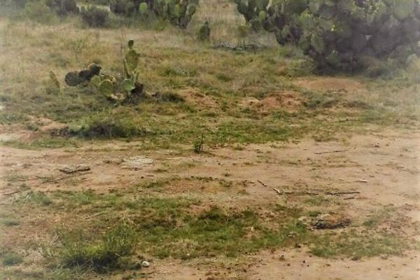 Foto de terreno habitacional en venta en el llano s/n , san juan tizahuapan, epazoyucan, hidalgo, 3433189 No. 05