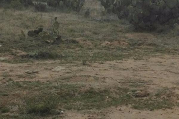 Foto de terreno habitacional en venta en el llano s/n , san juan tizahuapan, epazoyucan, hidalgo, 3433189 No. 07