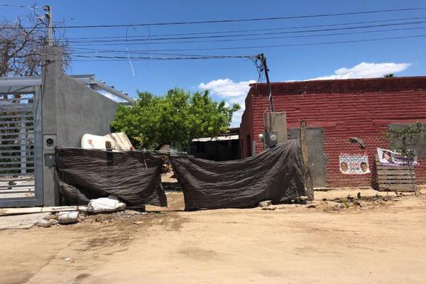 Foto de terreno habitacional en venta en  , el manglito, loreto, baja california sur, 8093132 No. 03