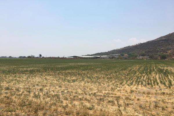 Foto de terreno industrial en venta en el marques 0, paseos del marques, el marqués, querétaro, 8842874 No. 03