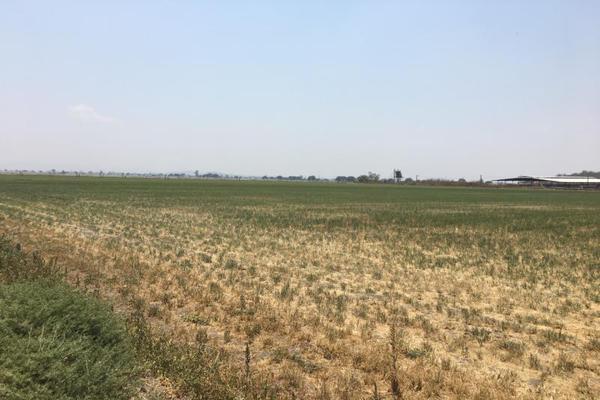 Foto de terreno industrial en venta en el marques 0, paseos del marques, el marqués, querétaro, 8842874 No. 04