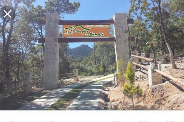 Foto de terreno habitacional en venta en  , el mirador (la coyotera), omitlán de juárez, hidalgo, 8066835 No. 01