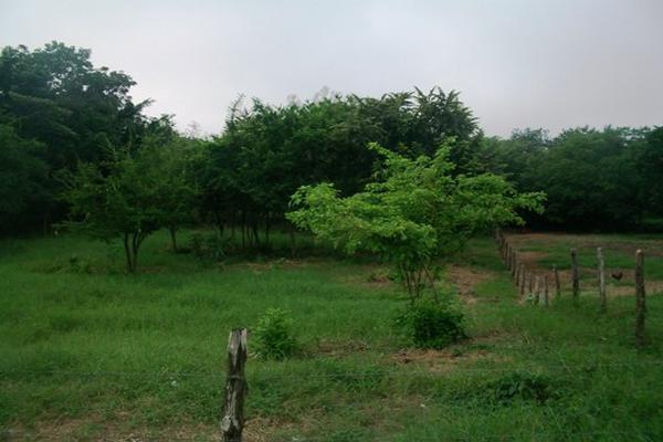 Foto de terreno habitacional en venta en el molino , el molino, pánuco, veracruz de ignacio de la llave, 3499303 No. 05