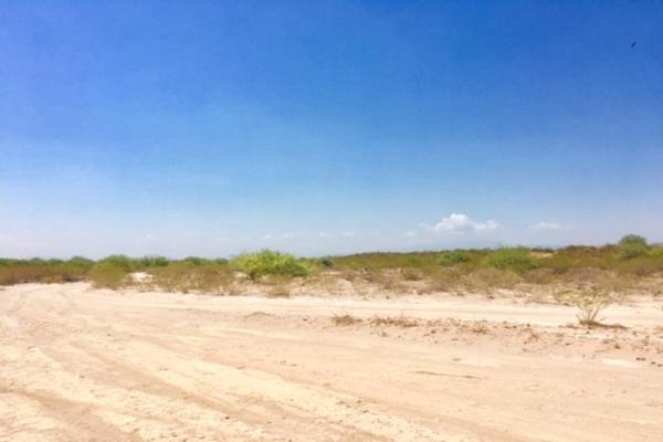 Foto de terreno comercial en venta en  , el olivo, matamoros, coahuila de zaragoza, 7194939 No. 01