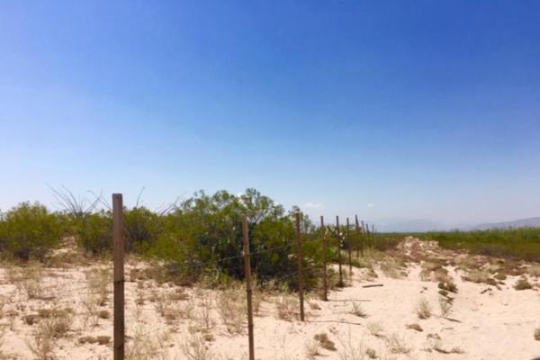 Foto de terreno comercial en venta en  , el olivo, matamoros, coahuila de zaragoza, 7194939 No. 06
