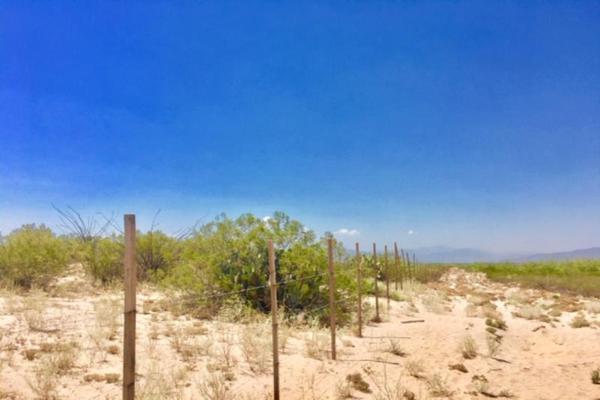 Foto de terreno comercial en venta en  , el olivo, matamoros, coahuila de zaragoza, 7194939 No. 07