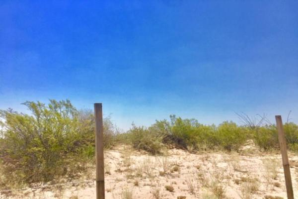Foto de terreno comercial en venta en  , el olivo, matamoros, coahuila de zaragoza, 7194939 No. 08