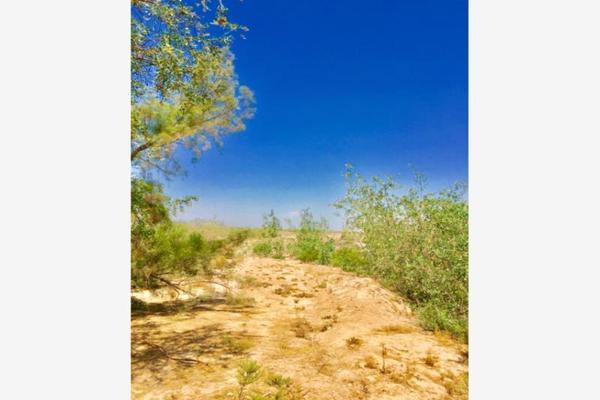 Foto de terreno comercial en venta en  , el olivo, matamoros, coahuila de zaragoza, 7194939 No. 14