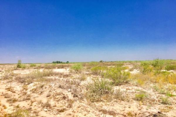 Foto de terreno comercial en venta en  , el olivo, matamoros, coahuila de zaragoza, 7194939 No. 16