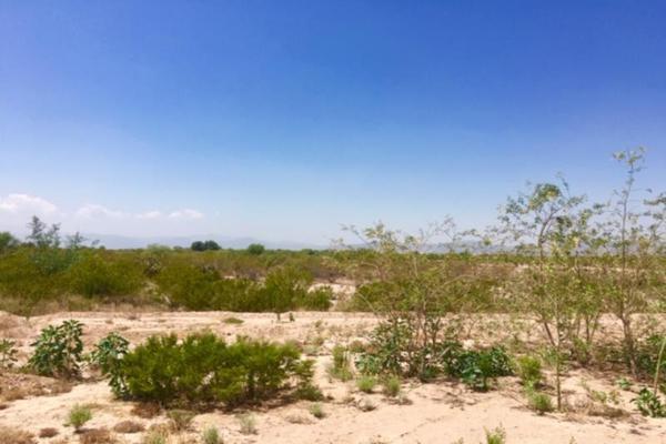 Foto de terreno comercial en venta en  , el olivo, matamoros, coahuila de zaragoza, 7194939 No. 19