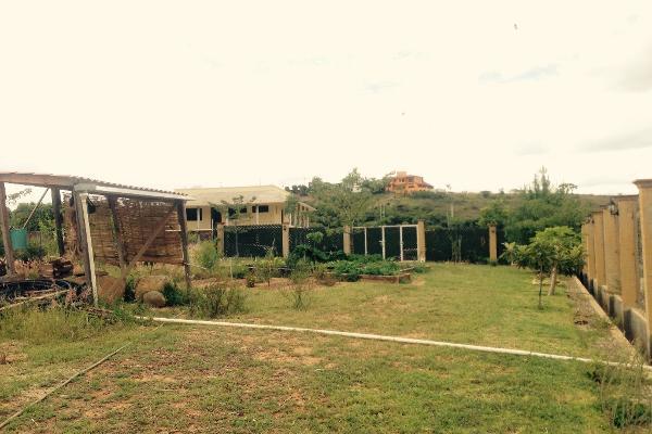 Foto de terreno habitacional en venta en el paraje luhu-daan-thun s/n , san andres huayapam, san andrés huayápam, oaxaca, 5665333 No. 02