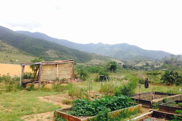 Foto de terreno habitacional en venta en el paraje luhu-daan-thun s/n , san andres huayapam, san andrés huayápam, oaxaca, 5665333 No. 06