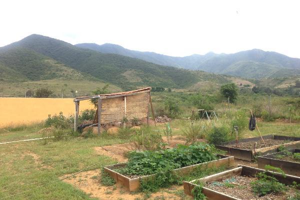 Foto de terreno habitacional en venta en el paraje luhu-daan-thun s/n , san andres huayapam, san andrés huayápam, oaxaca, 5665333 No. 07