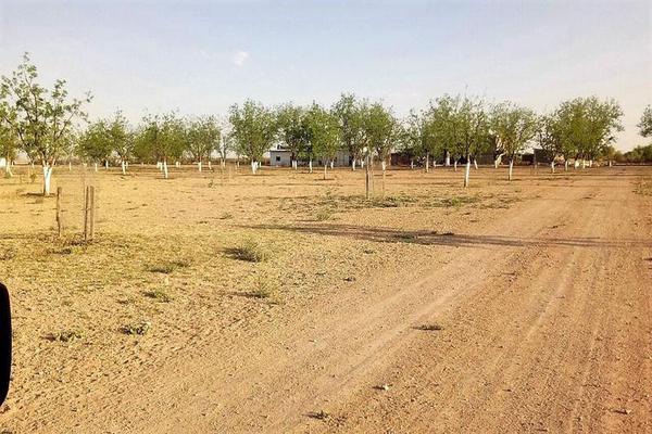 Foto de casa en venta en  , el porvenir, camargo, chihuahua, 7312839 No. 09