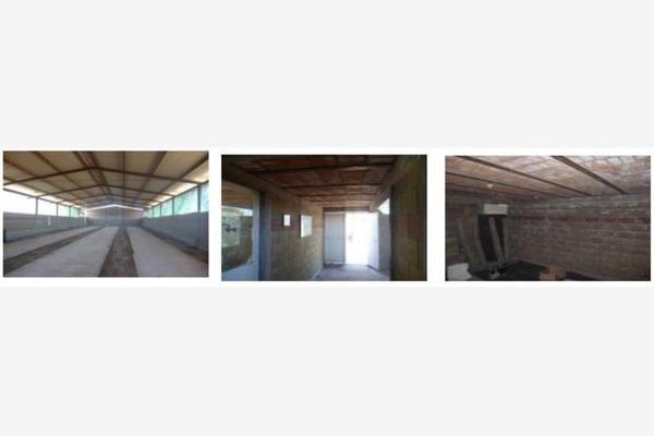 Foto de rancho en venta en  , el refugio de peñuelas, aguascalientes, aguascalientes, 7191159 No. 04