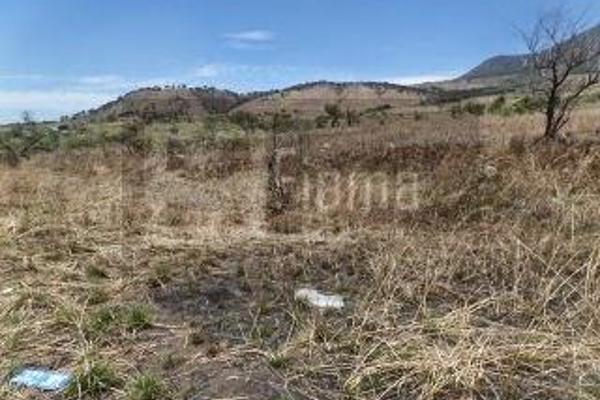 Foto de rancho en venta en  , el refugio, tepic, nayarit, 2637315 No. 03
