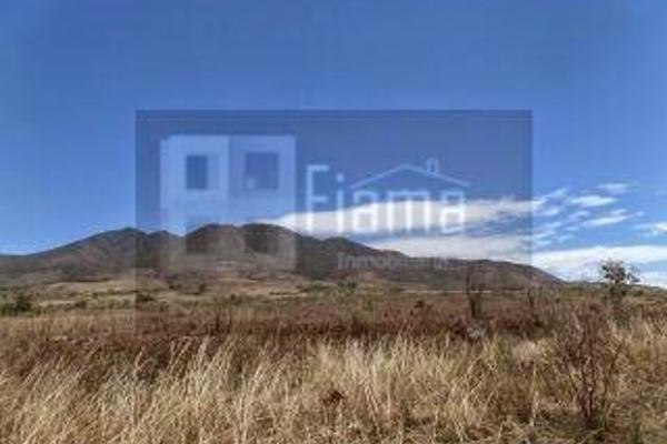 Foto de rancho en venta en  , el refugio, tepic, nayarit, 2637315 No. 06
