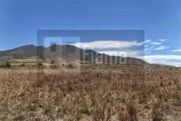 Foto de rancho en venta en  , el refugio, tepic, nayarit, 2637315 No. 08