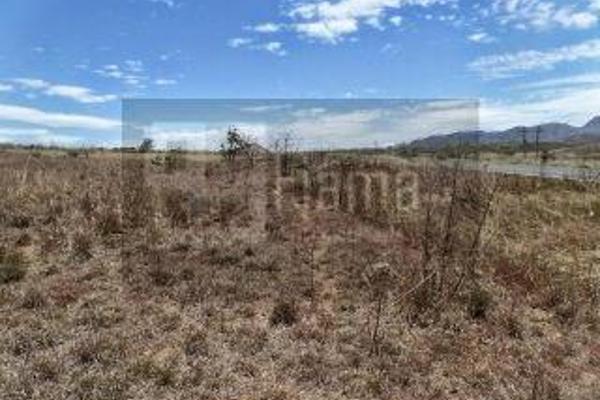Foto de rancho en venta en  , el refugio, tepic, nayarit, 2637315 No. 10