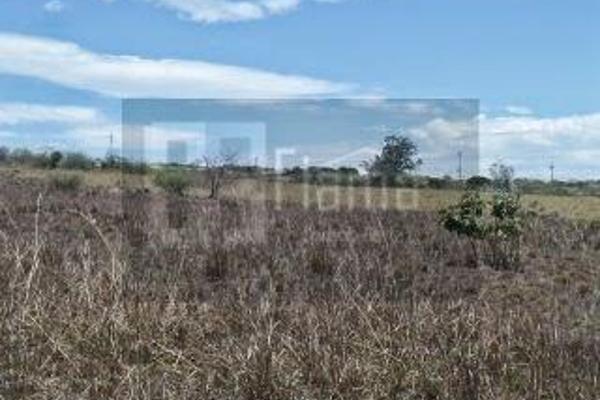 Foto de rancho en venta en  , el refugio, tepic, nayarit, 2637315 No. 13