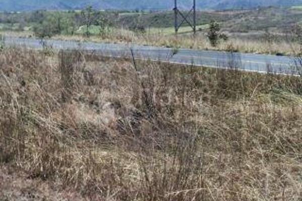 Foto de rancho en venta en  , el refugio, tepic, nayarit, 2637315 No. 16
