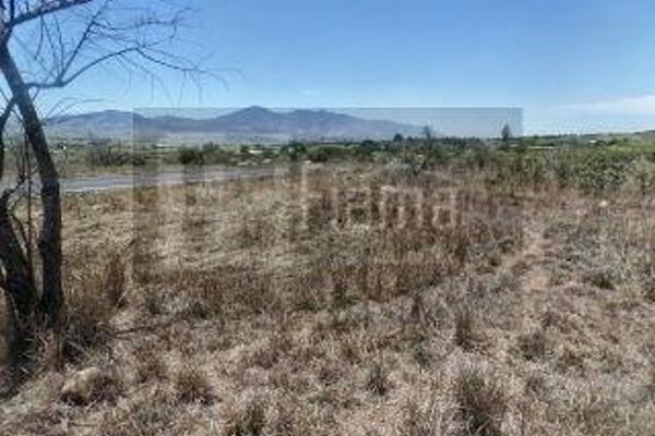 Foto de rancho en venta en  , el refugio, tepic, nayarit, 2637315 No. 17