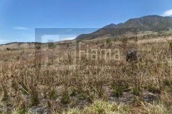 Foto de rancho en venta en  , el refugio, tepic, nayarit, 2637315 No. 19