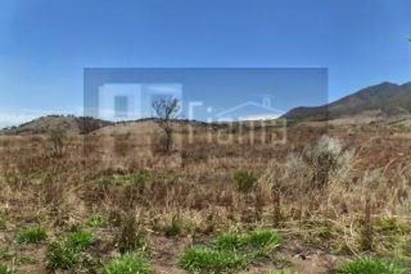Foto de rancho en venta en  , el refugio, tepic, nayarit, 2637315 No. 20