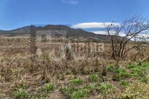 Foto de rancho en venta en  , el refugio, tepic, nayarit, 2637315 No. 21