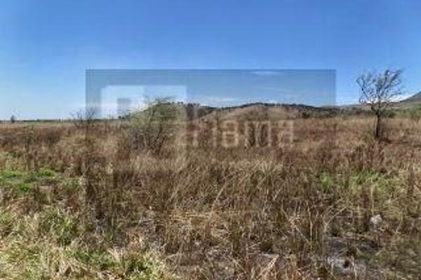 Foto de rancho en venta en  , el refugio, tepic, nayarit, 2637315 No. 22