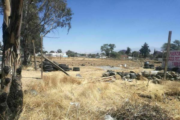 Foto de terreno comercial en venta en el rio , san juan temamatla, temamatla, méxico, 21143456 No. 03