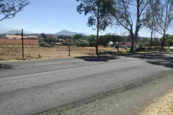 Foto de terreno comercial en venta en el rio , san juan temamatla, temamatla, méxico, 21143456 No. 06