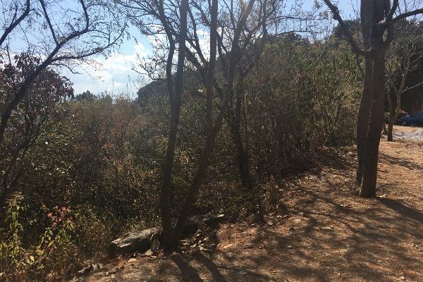Foto de terreno habitacional en venta en el santuario . , el santuario, la piedad, michoacán de ocampo, 4667076 No. 03