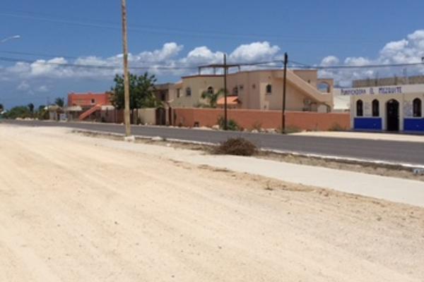 Foto de terreno comercial en venta en  , el sargento, la paz, baja california sur, 1124485 No. 03
