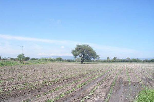 Foto de terreno habitacional en venta en  , el sáuz, tequisquiapan, querétaro, 8051018 No. 01