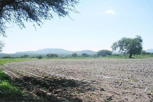 Foto de terreno habitacional en venta en  , el sáuz, tequisquiapan, querétaro, 8051018 No. 02
