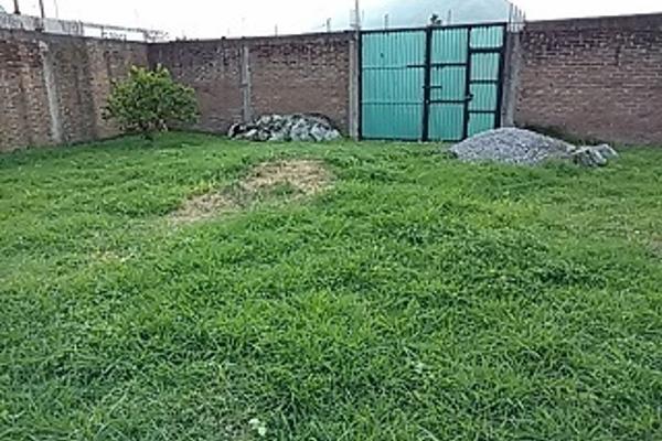 Foto de terreno habitacional en venta en  , el trébol ctm, ixtaczoquitlán, veracruz de ignacio de la llave, 3225278 No. 02