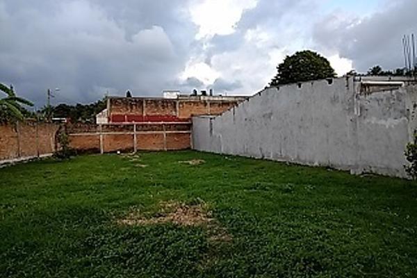 Foto de terreno habitacional en venta en  , el tr?bol ctm, ixtaczoquitl?n, veracruz de ignacio de la llave, 3225278 No. 05