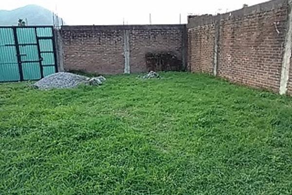 Foto de terreno habitacional en venta en  , el tr?bol ctm, ixtaczoquitl?n, veracruz de ignacio de la llave, 3225278 No. 06