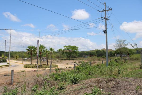 Foto de terreno comercial en venta en  , el venadillo, mazatlán, sinaloa, 14519085 No. 08