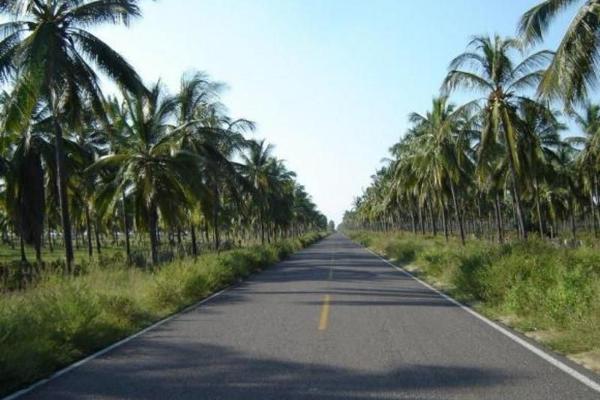 Foto de terreno comercial en venta en  , el walamo, mazatlán, sinaloa, 2640140 No. 09