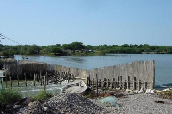 Foto de terreno comercial en venta en  , el walamo, mazatlán, sinaloa, 2640140 No. 10