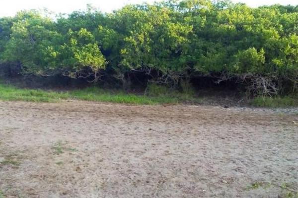 Foto de terreno comercial en venta en  , el walamo, mazatlán, sinaloa, 2640140 No. 15