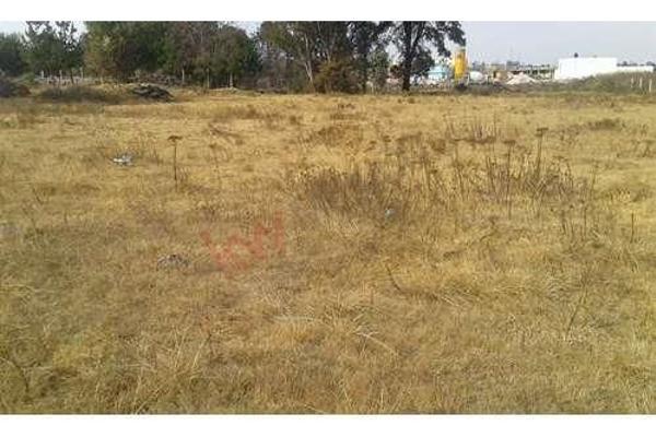 Foto de terreno habitacional en venta en el xhitey , jilotepec de molina enríquez, jilotepec, méxico, 5945724 No. 03