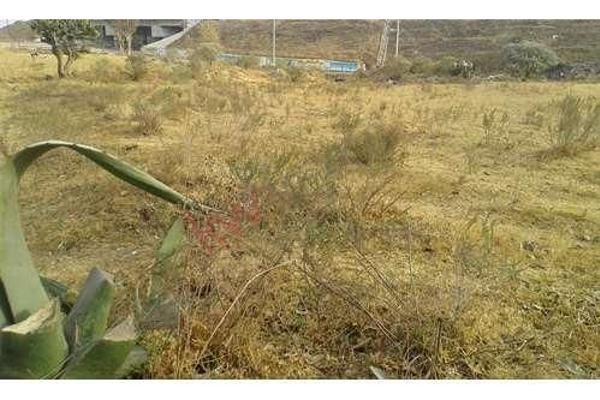 Foto de terreno habitacional en venta en el xhitey , jilotepec de molina enríquez, jilotepec, méxico, 5945724 No. 04
