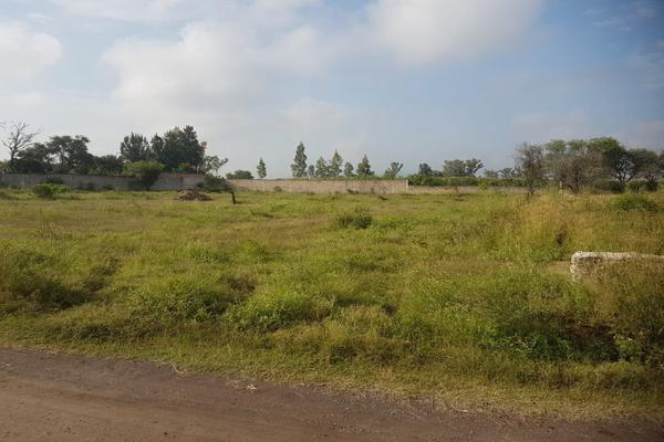 Foto de terreno habitacional en venta en  , el zapote del valle, tlajomulco de zúñiga, jalisco, 13776499 No. 04