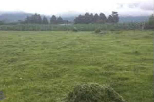 Foto de terreno industrial en venta en emiliano zapata 127, izta-popo, amecameca, méxico, 5891536 No. 01